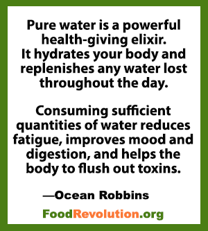 Water safety quote by Ocean Robbins